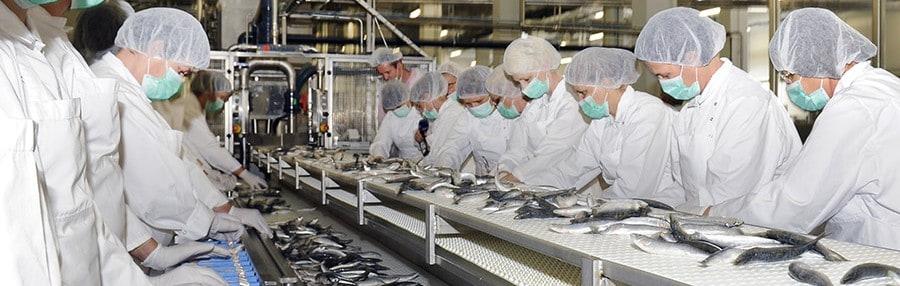 Otvaranje tvornice
